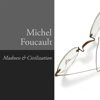 Michel Foucault - Madness and Civilization: A History of Insanity in the Age of Reason  artwork