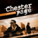 Twist in My Sobriety (Acoustic Version) - Chester Page