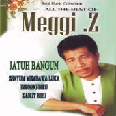 Jatuh Bangun - Meggy Z