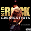 Greatest Hits: You Never Saw Coming - Kid Rock