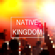 Reckless Love (Of God) - Native Kingdom