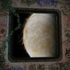 Moons of Jupiter - ThugWidow