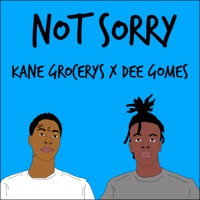 Not Sorry (feat. Dee Gomes) - Single Mp3 Download