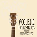 AH Performs Fleetwood Mac