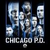 Chicago PD, Season 6 wiki, synopsis