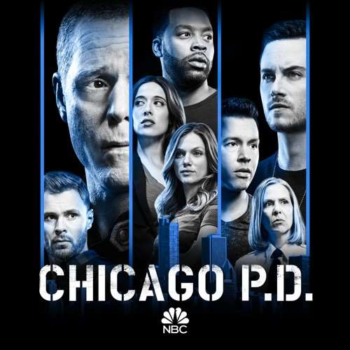 Chicago PD, Season 6 image
