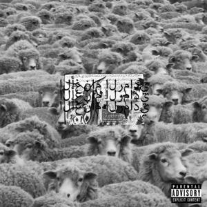 Grey Sheep II Mp3 Download