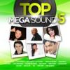 Top Mega Sound Vol. 5