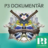 Podcast cover art for P3 Dokumentär