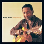 Muddy Waters - Young Fashioned Ways