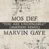 You Are Undeniable Amerigo Remix Single