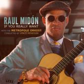 Pick Somebody Up-Raul Midón, Metropole Orkest & Vince Mendoza