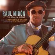 Ride on a Rainbow - Raul Midon, Metropole Orkest & Vince Mendoza - Raul Midon, Metropole Orkest & Vince Mendoza