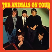 The Animals - Ain't Got You
