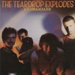 The Teardrop Explodes - Books
