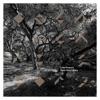 Luke Howard - Open Heart Story Album