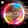 Best of Ibiza 2019 - Verschillende artiesten