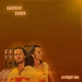 Illiterate Light - Growin' Down