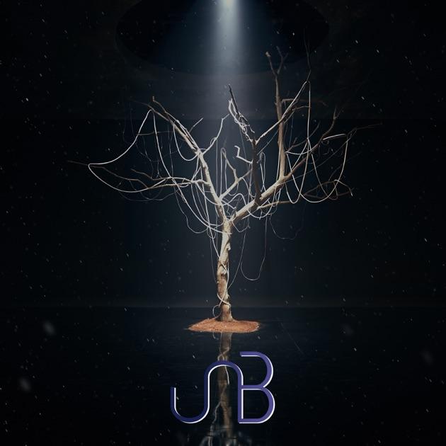 UNB – Boyhood – EP [iTunes Plus M4A] | iplusall.4fullz.com