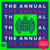 Noel Burgess - Ministry Of Sound: The Annual 2019 (Continuous Mix 1)