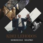 Kdei Lehodos - Single