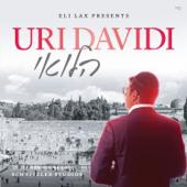 Halevai-Uri Davidi