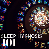 Sleep Hypnosis 101 - Healing Sleeping Therapy Background Songs to Reduce Stress