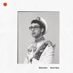 Bleachers - Don't Take the Money