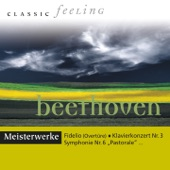 Dresdner Philharmonie - Sinfonie No. 9 in D Minor, Op. 125: IV. Presto