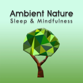 Sleep to Ambient Nature Sounds