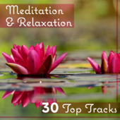 Meditation & Relaxation – 30 Top Tracks: Healing Yoga Zone, Sleeping Trouble, Deep Concentration, Natural Music for Body, Mind & Soul