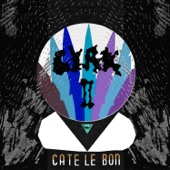 Cate Le Bon - The Eiggy Sea