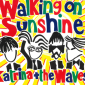 Walking on Sunshine (2004 Version)