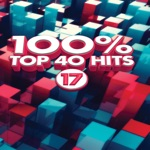 100% Top 40 Hits 17