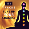 Third Eye Chakra - Opening Chakras Sanctuary