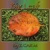 Big Leaf - Single, Z Car M