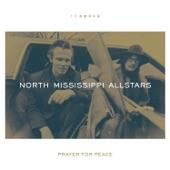 North Mississippi Allstars - You Got to Move