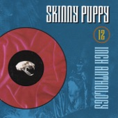 Skinny Puppy - Assimilate (R:23 Remix)