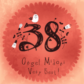 The Very Best of Orgel 38