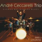 Andre Ceccarelli Trio - April in Paris