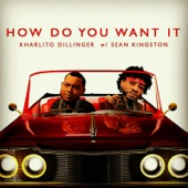 How Do You Want It (feat. Sean Kingston) - Single