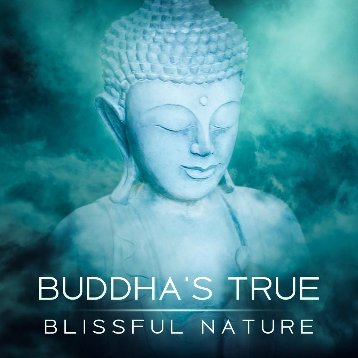 Buddha's True Blissful Nature: Essence of the Mind