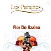Los Panchos Del Güero Gil - Flor De Azalea artwork