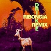 Drinkee (Ribonga Remix) - Single