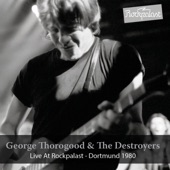 George Thorogood - Cocain Blues (feat. The Destroyers) [Live]