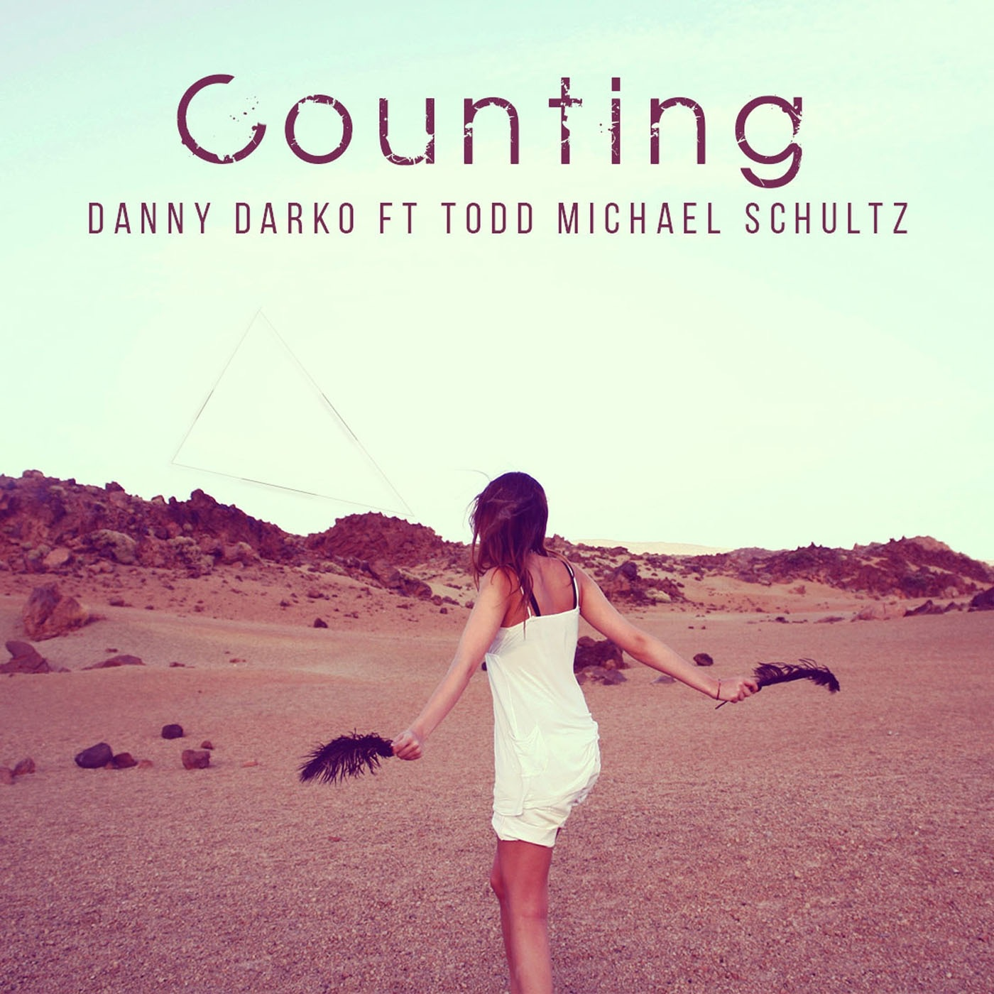 Counting (feat. Todd Michael Schultz) - Single
