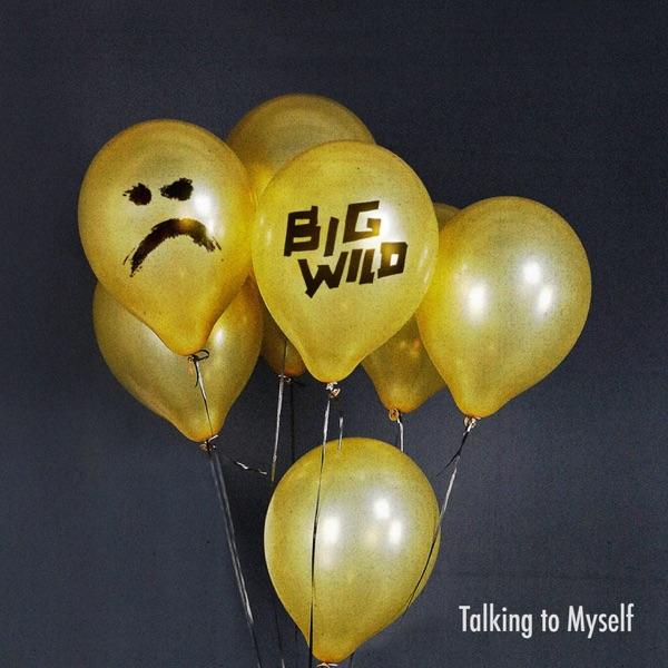 Talking to Myself (Big Wild Remix) - Single