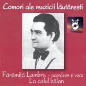 Fărâmiță Lambru (Acordeon Și Voce)