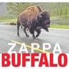 Buffalo (Live At Buffalo Memorial Auditorium/1980), Frank Zappa