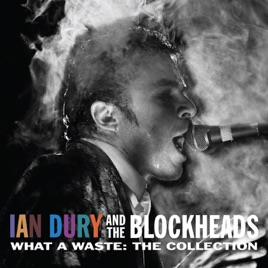 What a waste the collection by ian dury the blockheads on apple music what a waste the collection ian dury solutioingenieria Choice Image